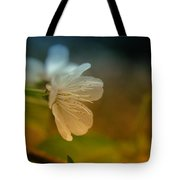Side View Of An Apple Blossom Tote Bag