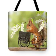Side View Of Red Squirrel Playing Tote Bag