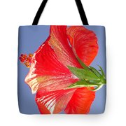 Side View Of Scarlet Red Hibiscus In Bright Light Tote Bag