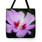 Side Yard Flower 1 Tote Bag