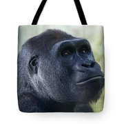 Sideways Glance Tote Bag