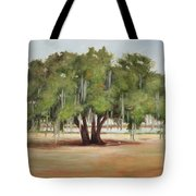 Sidney Lanier's Muse Tote Bag