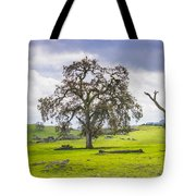 Sierra Foothills And Clouds Tote Bag