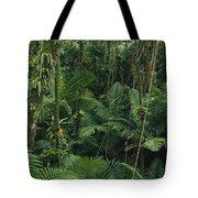 Sierra Palm Trees El Yunque Puerto Rico Tote Bag