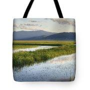 Sierra Valley Wetlands Tote Bag