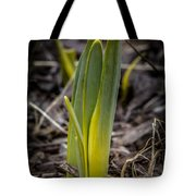 Sign Of Spring 2 Tote Bag