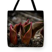 Sign Of Spring In Red Tote Bag