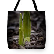 Sign Of Spring Tote Bag