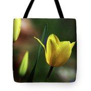 Signs Of Spring II Tote Bag
