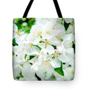 Signs That Spring Has Sprung Tote Bag
