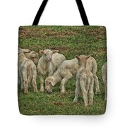Silence Of The Lambs Tote Bag