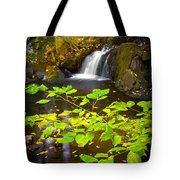Silent Brook Tote Bag