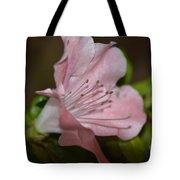Silent Pink Photo B Tote Bag