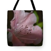 Silent Pink Photo D Tote Bag