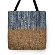 Silent Sentinels Of Autumn Grasses Tote Bag