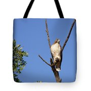 Silent Watch Tote Bag