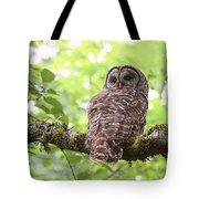 Silent Watcher Of The Woods Tote Bag