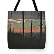 Silhouette @ Yosemite Tote Bag