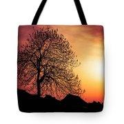 Silhouette Of Tree Tote Bag