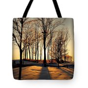 Silhouette Of Trees And Ice Tote Bag