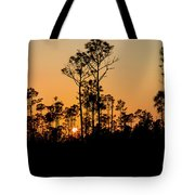 Silhouette Of Trees At Sunset Tote Bag
