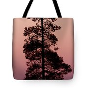 Silhouette Tree At Sunrise Tote Bag