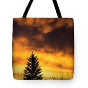 Silhouetted Evergreen Tree Tote Bag