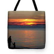 Silhouetted In Sunset At Sturgeon Point Marina Tote Bag