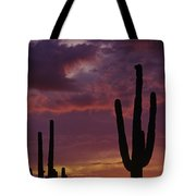 Silhouetted Saguaro Cactus Sunset  Tote Bag