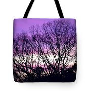 Silhouettes Against Pink Skies Tote Bag