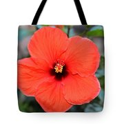 Silky Red Hibiscus Flower Tote Bag