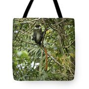 Silly Red-tailed Monkey Tote Bag