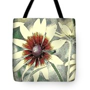 Silly Suzans Tote Bag