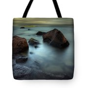 Silver And Gold Tote Bag