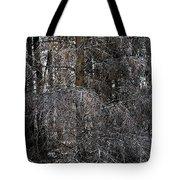 Silver Cedar Tote Bag