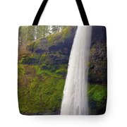 Silver Falls 3 Tote Bag