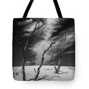 Silver Lake Dune With Dead Trees And Cirrus Clouds In Black And White Tote Bag