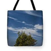 Silver Lake Dune With Tree Grove And Cirrus Clouds Tote Bag