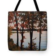 Silver Lake Through Autumn Trees Tote Bag
