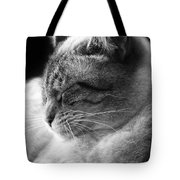 Silver Lynx Point Tote Bag