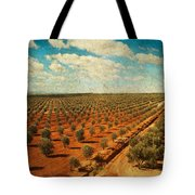 Silver Olive Trees In Andalusia. Spain Tote Bag