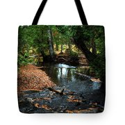 Silver River Channel In Autumn Tote Bag