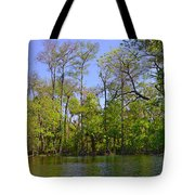 Silver River Florida Tote Bag
