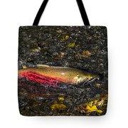 Silver Salmon Spawning Tote Bag