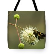 Silver-spotted Skipper On Buttonbush Flower Tote Bag
