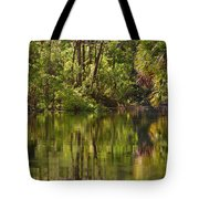 Silver Springs Nature Park Florida Tote Bag by Christine Till