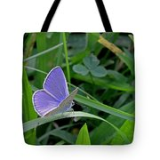 Silver Studded Blue Butterfly Tote Bag