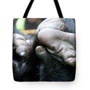 Silverback Grooming 2 Tote Bag