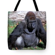 Silverback Western Lowland Gorilla Tote Bag