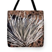 Silversword Leaves Tote Bag